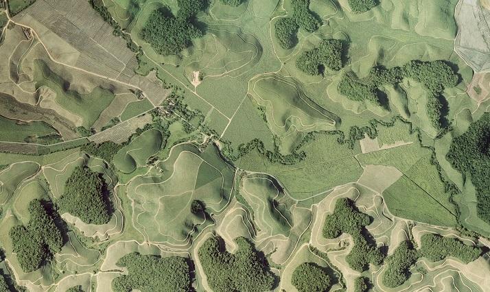 The aerial photo shows forest fragments of the Brazilian Atlantic rainforest in Northeastern Brazil (Mata Atlântica), surrounded by sugar cane plantations. Photo: Mateus Dantas de Paula
